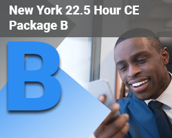 New York 22.5 Hour CE Package B
