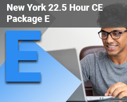 New York 22.5 Hour CE Package E